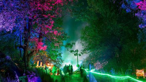 enchanted forest gathering  lineup jun