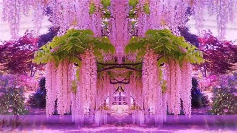 and easy hair colors wisteria colour pixshark com images galleries with