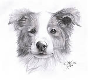 Dog Portrait Tattoo Sketch