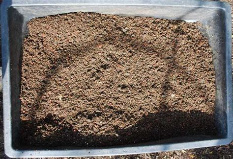 potting soil container gardening drainage container garden soil potting mixes