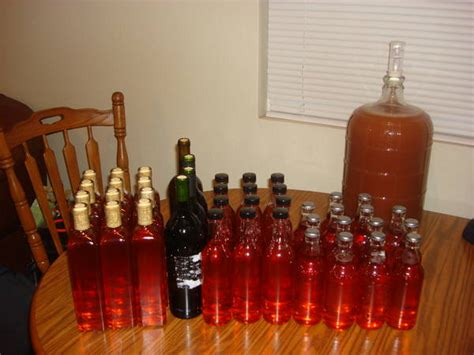 bottled prickly pear mead home brew forums