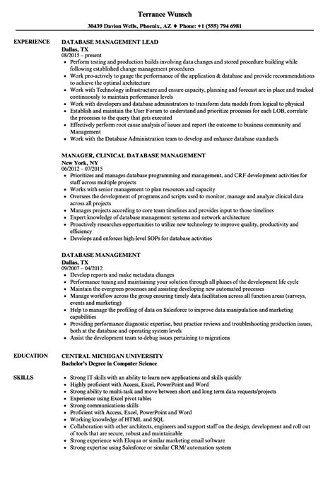 Resume Database by Database Management Resume Sles Velvet