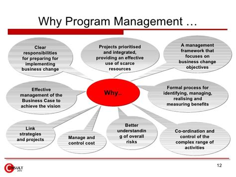 program management program management