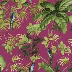 Exotic Tropical Birds