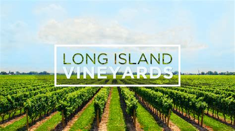 Long Island Vineyard Gift Baskets   Gift Ftempo