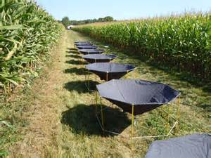 Aerial Cover Crop Application