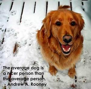 Best Dog Quotes. QuotesGram