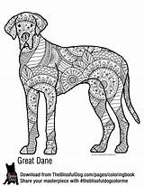 Coloring Dane Bold Dog Template Adult Danes Colouring Dogs Breeds Printables Colour Sketch sketch template