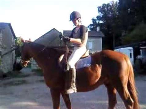 comment monter a cheval comment faire monter lydia sur un cheval la r 233 ponse est sur admicile fr