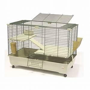 Cage A Cochon D Inde : cage clapier et enclos rongeur rongeurs chez ~ Dallasstarsshop.com Idées de Décoration