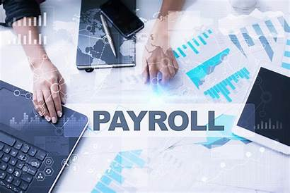 Payroll Services Business Ranking Favorite Sales