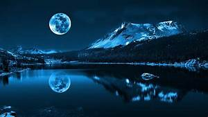 Blue, Night, Forest, Trees, Water, Cold, Moon, Mountain