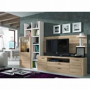 Ensemble Meuble Tv Et Bibliotheque Solutions Pour La