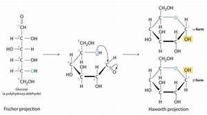 biochemislikesocool | A great WordPress.com site | Page 5