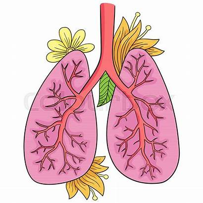 Lungs Drawing Human Doodle Clipartmag Vector
