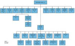 Group Home Organizational Structure Chart