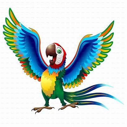 Cartoon Macaw Parrot Transparent Brazil Clipart Animal