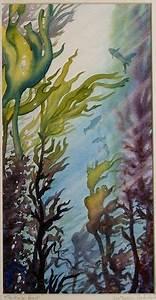 kelp - Google Search   Kelp, sea life   Pinterest   Search ...
