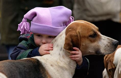 animals kind dog week children involved bond most during dogs dogtime pet member sitting graham tim getty pups through
