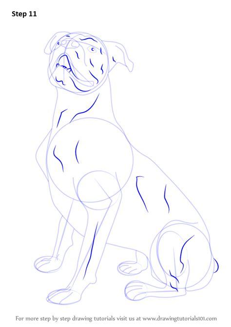 learn   draw  boxer dog farm animals step  step