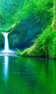 Beautiful Nature Wallpapers Free Download Widescreen HD ...