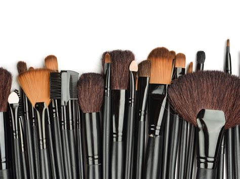 the complete guide to makeup brush types names uses colorescience learn