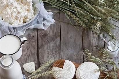 Cheese Milk Cottage Dei Quark Curd Farmer