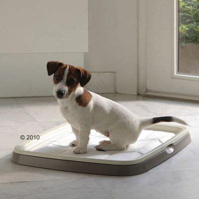 puppy trainer toilettes pour chiot zooplus