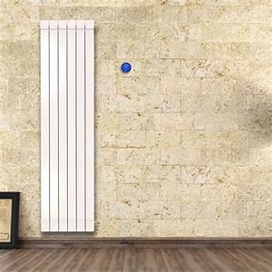 Cache Radiateur Pas Cher : radiateur fluide pas cher ~ Premium-room.com Idées de Décoration