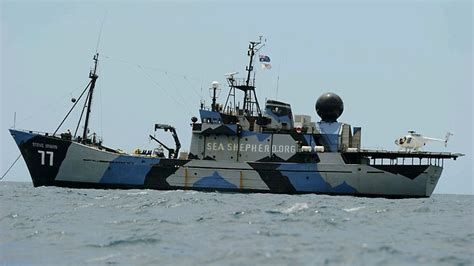 Barker Boats Lawsuit by Sea Shepherd Hit By Harpoon Herald Sun