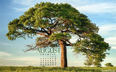 Beautiful August Desktop & Mobile Wallpaper - Free Backgrounds