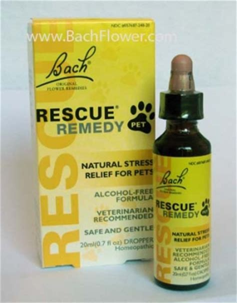 rescue remedy for cats bach flower remedies rescue remedy pets dogs cats horses birds