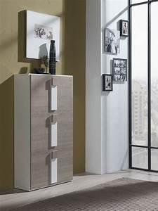 Meuble D Entrée Chaussures : meuble d 39 entr e pour chaussures ~ Farleysfitness.com Idées de Décoration
