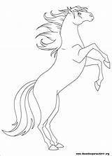 Coloring Ranch Desenhos Spirit Para Horse Desenho Coloriage Colorir Frozen Imprimir Printable sketch template