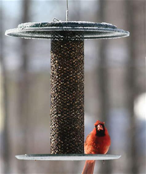 duncraft com birdschoice safflower magnet feeder