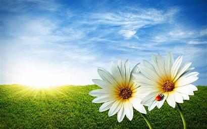 Desktop Spring Wallpapers Comes Latoro Nature Springtime