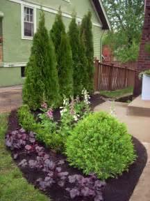 common front yard trees landscaping shrubs bbt com