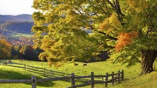 Beautiful Scenery ...Beautiful Nature Scenery Wallpapers