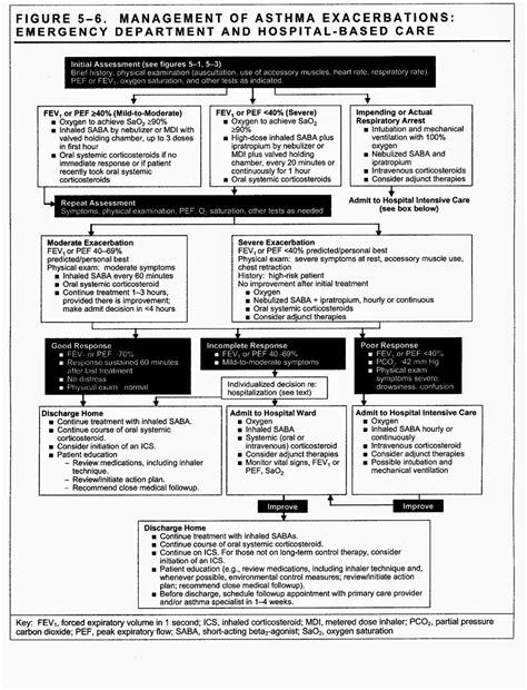 hEiDiMatEs - MeDICinE: Acute exacerbation of asthma