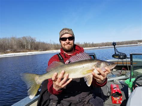 Boat Dealers Near Forest Lake Mn by Lake Of The Woods Fishing Report Lake Of The Woods