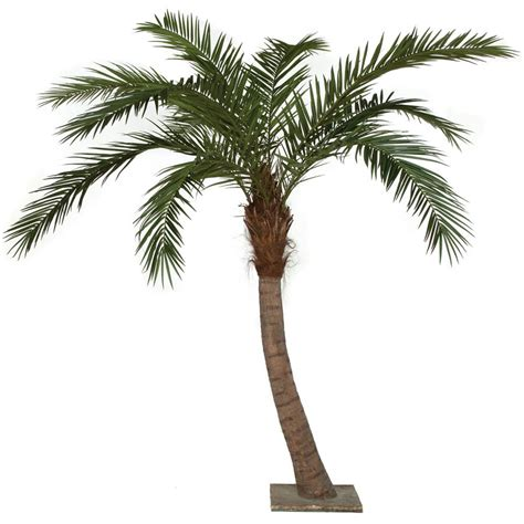 9 5 foot curved phoenix palm tree with synthetic trunk