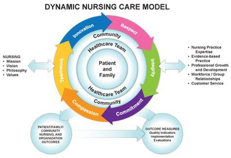 emerging roles  nursing care  accountability