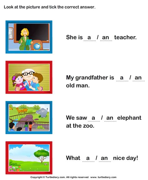 identify a or an to complete the sentence worksheet turtle diary
