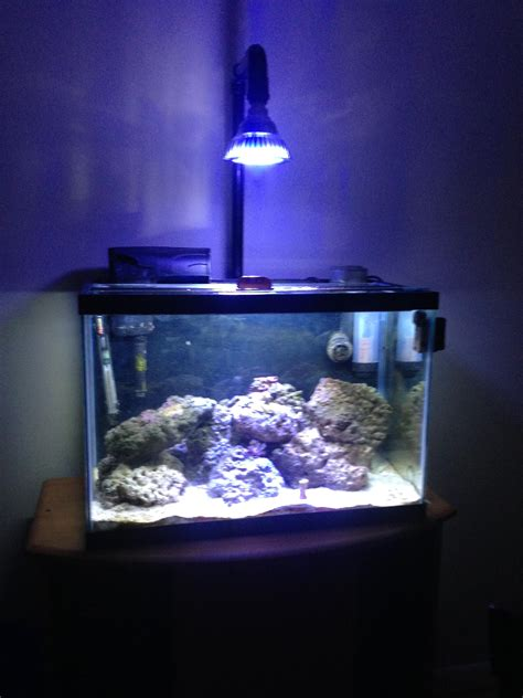 par38 led diy fixture my 20g lighting forum