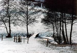 Petit Pont En Bois : 301 moved permanently ~ Melissatoandfro.com Idées de Décoration