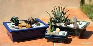 comment faire un petit jardin japonais miniature l With comment faire un jardin japonais miniature