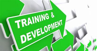 Training Development Success Thoughts Cruse Course Skill