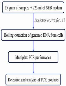 Development And Evaluation Of A Multiplex Pcr For