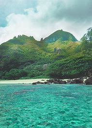 Tropical Beach Paradise Tumblr