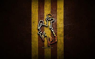 wallpapers wyoming cowboys golden logo ncaa